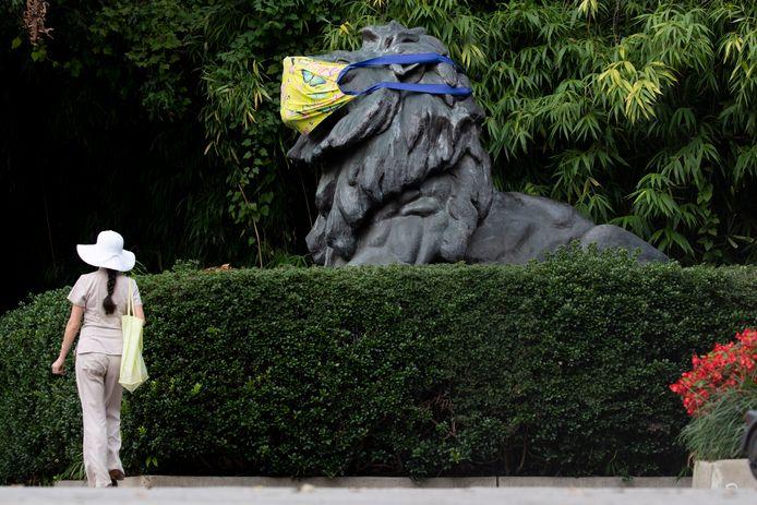 Een standbeeld van een leeuw bij de National Zoo in Washingtond draagt een mondkapje. In de dierentuin zijn zes leeuwen en drie tijgers besmet met het coronavirus.