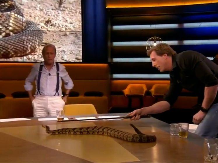 Freek Vonk legt giftige slang op tafel bij Op1, en niet iedereen is daar blij mee