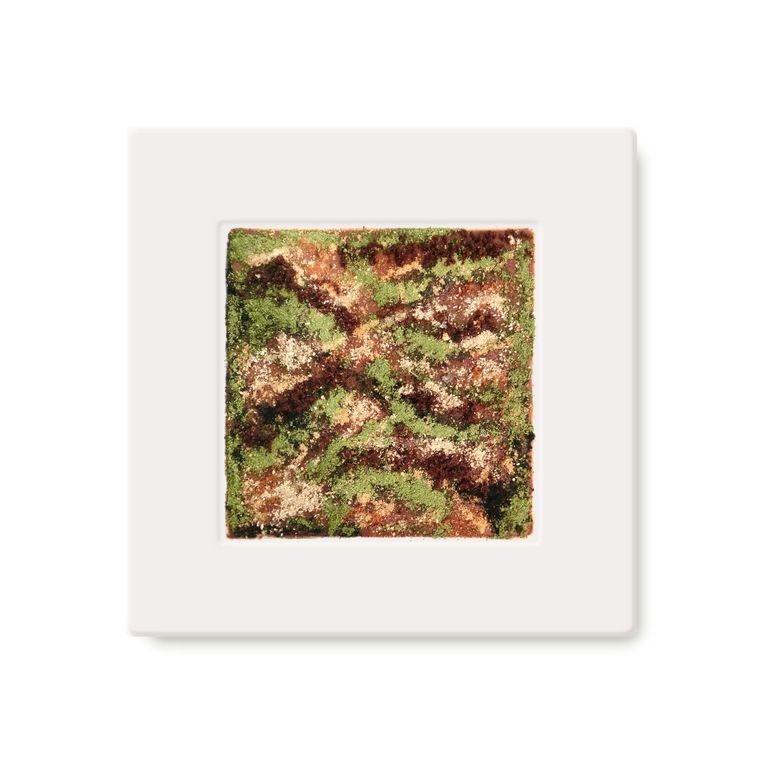 Smaak en kunst op een bord. 'Camouflage' is een waanzinnig dessert dat smaakt als een 'waanzinnig verhaal van Grimm'. Beeld rv