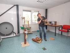 Dierenasiel Zwolle neemt opvang zwerfdieren over en zet dierenambulance neer in Kampen