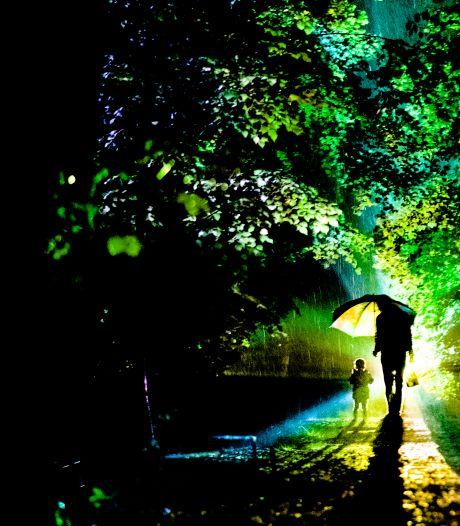 Kritiek op avondfestival Grote Schijn in Park Zypendaal: 'Funest voor de natuur'