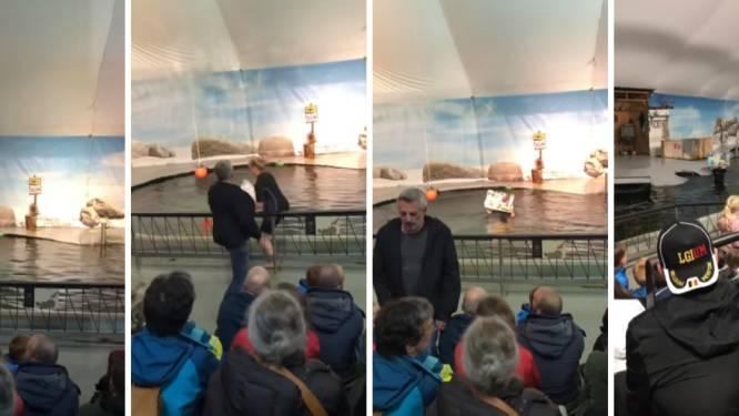 """VIDEO. Dierenrechtenactivisten verstoren zeeleeuwenshow in Antwerpse zoo: """"Shows worden tijdelijk geschrapt"""""""