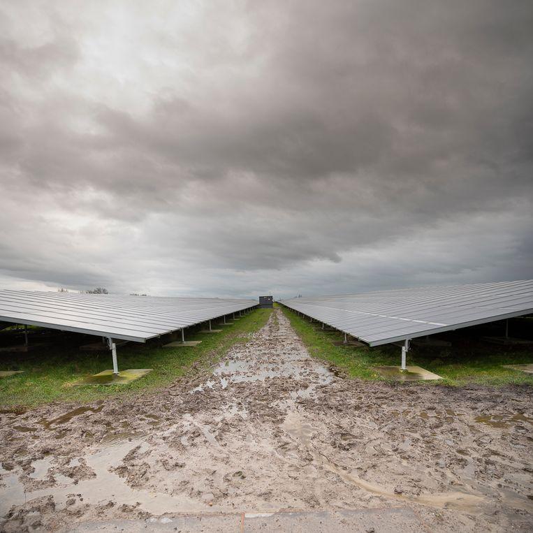 Deze zonneweide in het Friese Garyp staat er al, door de nieuwe Europese doelstelling komen er waarschijnlijk meer. Beeld Harry Cock / de Volkskrant