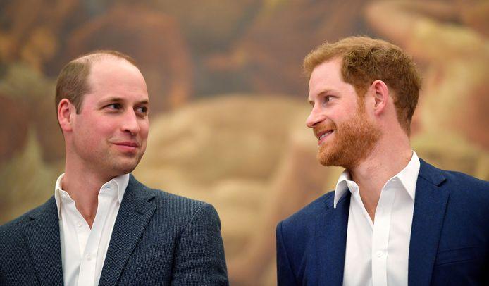 Le prince William et le prince Harry.