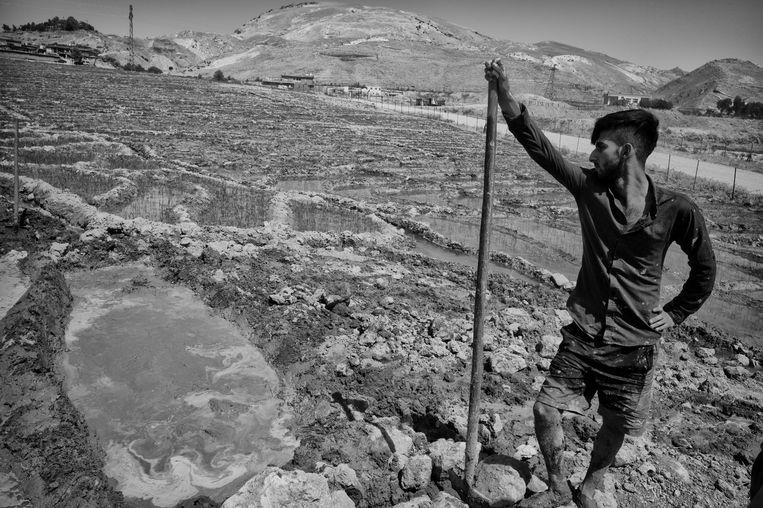 Sirwan Hoessein, rijstboer in het dorp Khellan, in de Koerdische grensstreek met Iran: 'We hebben geld nodig, en de overheid doet niets!' Beeld Eddy van Wessel