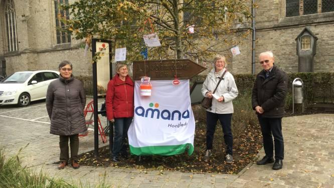 Samana zet wensboom op marktpleinen van Hooglede en Gits