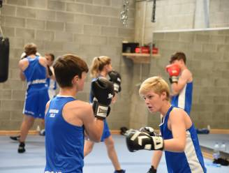 Boksteam Zele organiseert eerste bokstoernooi voor recreanten