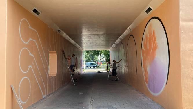 Woenselse bacteriën vinden onder het viaduct