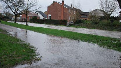 Waterpeil van verschillende Limburgse rivieren even gevaarlijk hoog