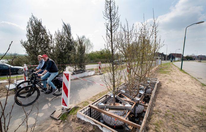 Bomen hoeven in de toekomst echt niet alleen maar in de grond te staan. Afgelopen maand zijn er tien zwevende bomen 'geplant' langs het fietspad tussen Utrecht en Wageningen.