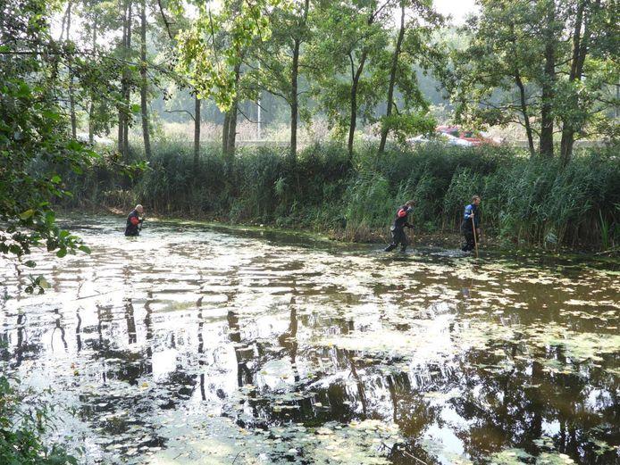 Duikers doorzoeken het water van de visvijver.