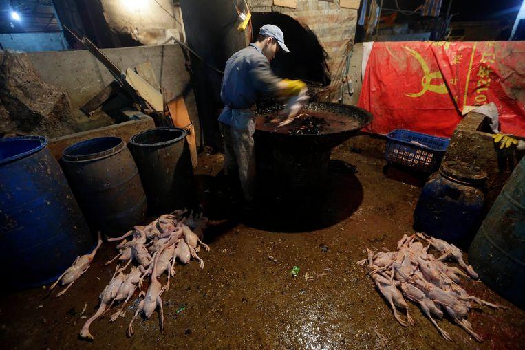 Een straatverkoper maakt eenden klaar voor verkoop op een dierenmarkt in Wuhan. Beeld REUTERS