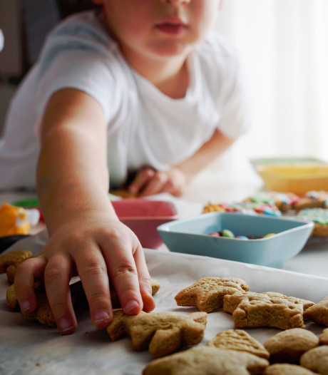 Brein obese kinderen werkt hen tegen bij verleidingen