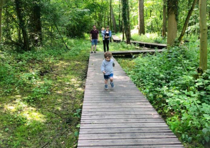 Terlindenpad Edegem maakt kans op 'Wandeling van het jaar' in de provincie Antwerpen.