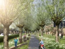 Ambacht bouwt veel goedkope woningen in centrum, laat ook veel groen overeind
