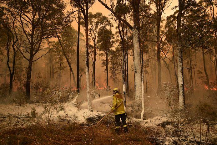 Een brandweerman spuit een brandvertragende stof op de bomen in een bos in New South Wales.