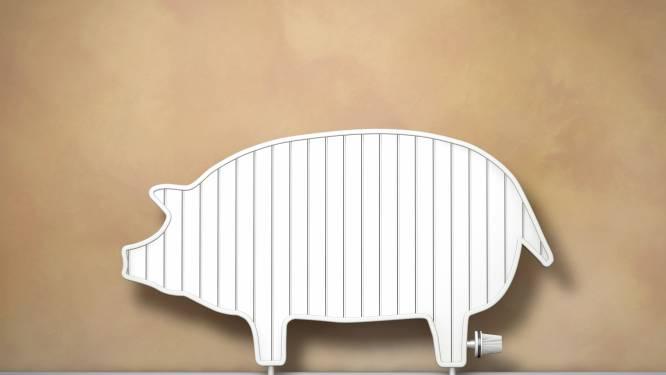 Je woning energiezuinig maken: wat kan je met 500, 5.000 en 10.000 euro?