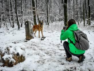 Komende uren sneeuw verwacht in de Ardennen