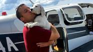 Maak kennis met piloot Paul, die enkel en alleen maar opstijgt om zoveel mogelijk viervoeters te kunnen redden