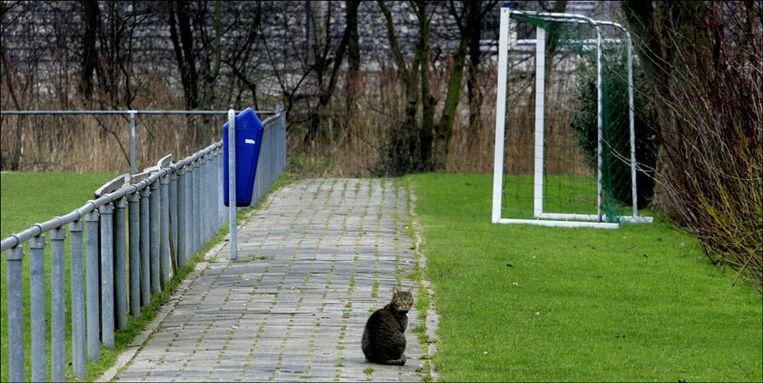 Als Türkiyemspor de betalingsachterstand bij de KNVB voldoet, dan gaat de thuiswedstrijd tegen Argon op 2 november wel 'gewoon' door. Foto ANP/Robin Utrecht Beeld