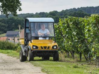 Al veertig jaar wijnmaker in het Hageland: het verhaal van Jos Vanlaer van domein Kluisberg