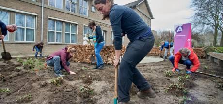 Maaslandcollege Oss omarmt planten Pivot Park: ze krijgen er een mooi nieuw thuis!