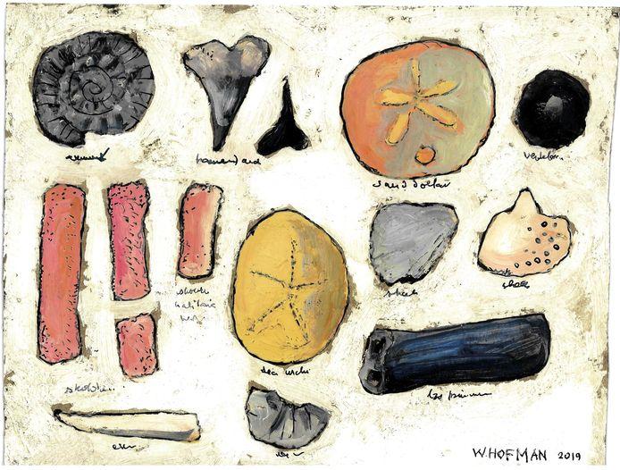 illustratie wim hofman: vondsten 26 juli