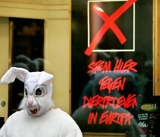Een dierenactivist verkleed als reusachtig konijn.