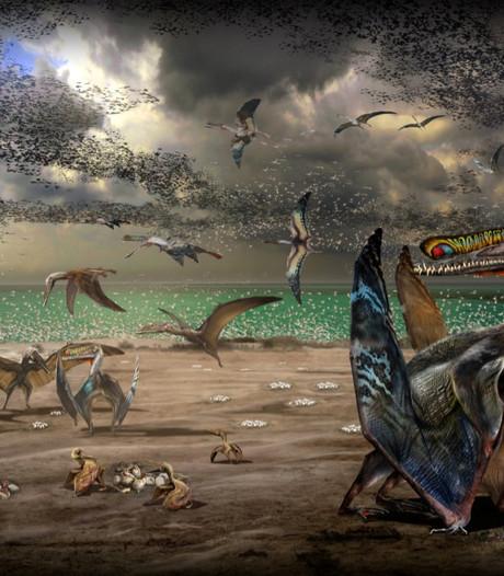 Jurassic Parc in China: een waar prehistorisch paradijs