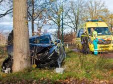 Auto zwaar beschadigd na botsing tegen boom in Heesch