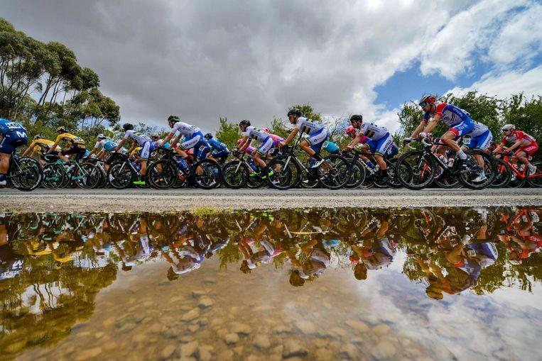 Het peloton rijdt langs de Cudlee Creek in de Tour Down Under 2020. Volgend jaar gaat de eerste WorldTour-rittenkoers niet door vanwege de pandemie. Beeld AFP