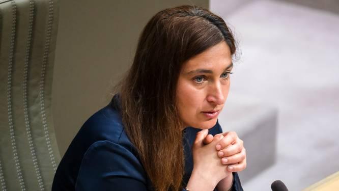"""Minister Demir (N-VA) reageert op plannen Natuurpunt: """"Kapping van 28 hectare bos in De Maten lijkt uitgesloten"""""""