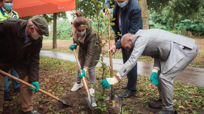 Natuurpunt Limburg en Cristal brouwerij verdelen 3.000 klimaatbomen (en planten eerste in Alken)