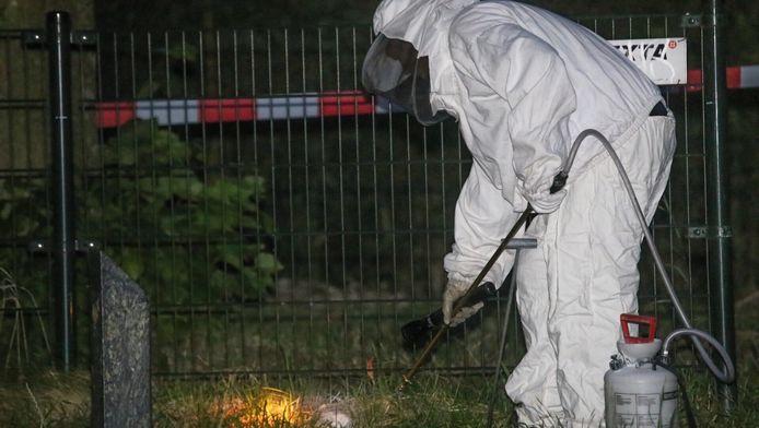 Een verdelger doodt de wespen in het muizenhol langs het Valleikanaal (links). Afgelopen weekend werden diverse voorbijgangers gestoken