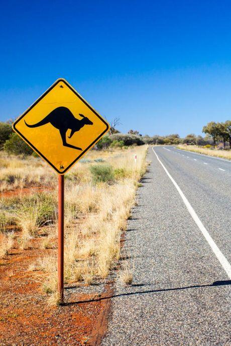Deux jeunes retrouvés vivants après plusieurs jours dans l'outback australien: ils n'avaient ni eau, ni nourriture