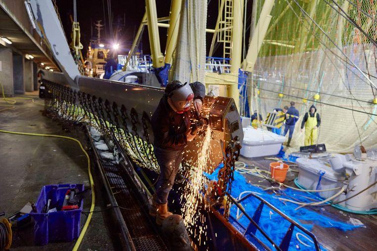 Een visser repareert een pulsvisnet in de haven van Scheveningen.  Beeld Pierre Crom / Getty Images