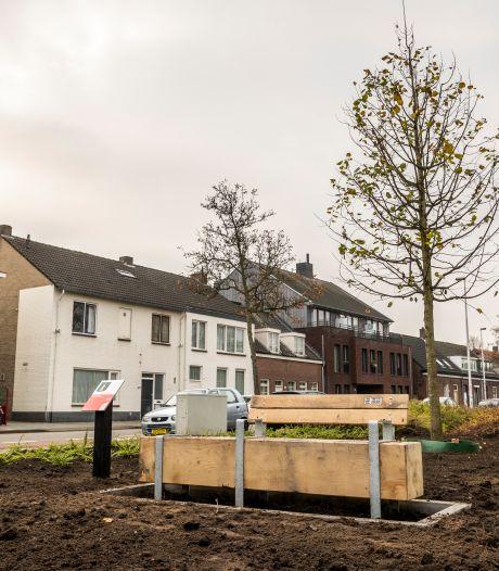 Herinneringsbomen als cadeau aan jarig Eindhoven