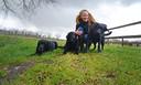 Hondentrainster Liselotte Meijer met haar honden.