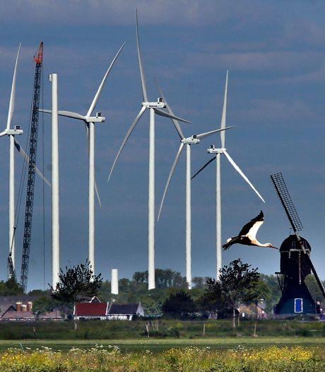 Provincie eist dat bewoners kunnen meepraten over Gorcumse windmolens: 'Wethouder is op de vingers getikt'