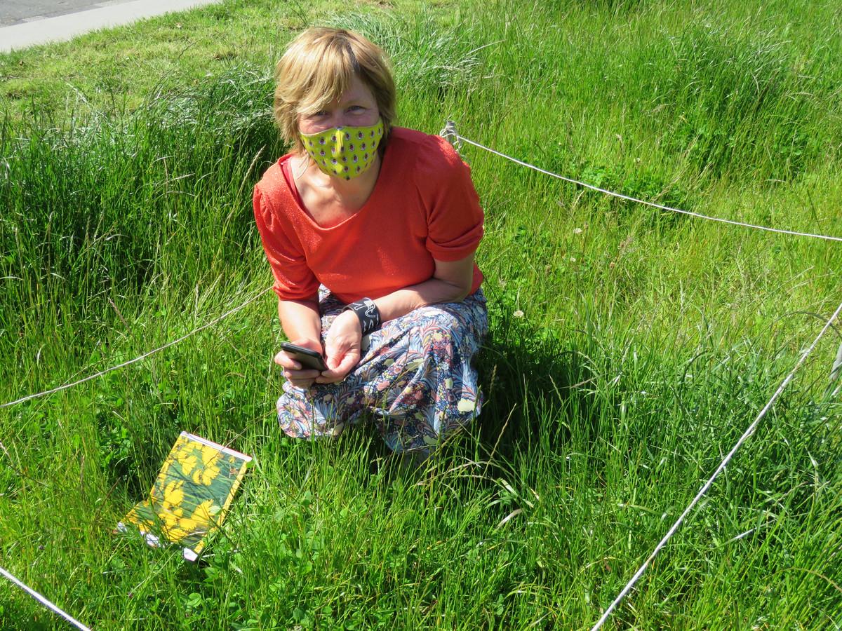 Met behulp van de app ObsIdentify  en een naslagwerk over wilde bloemen speurde milieuambtenaar Martine Lakiere naar bloemetjes in een afgebakende vierkante meter van het ongemaaide gras op het de Coninckplein.