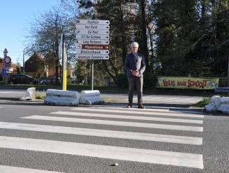 Stad overweegt extra 'gevleugelde' en dus veiligere zebrapaden in schoolbuurten