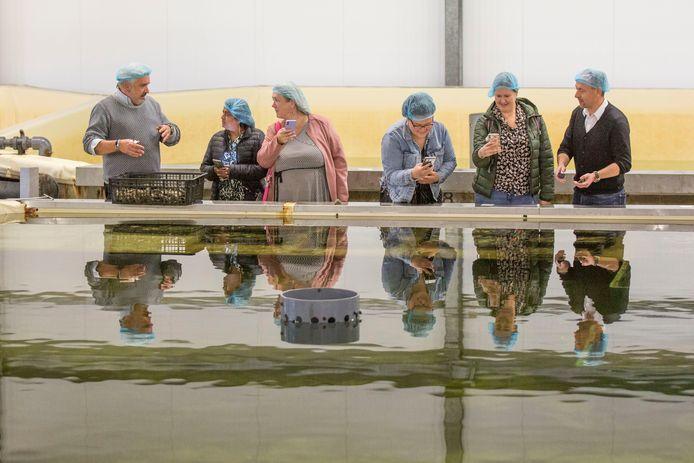 Johan Roelse geeft uitleg over de oester aan de vlogsters (vlnr) Priya Badeloe, Anne- Marie Otter, Helena Smit en Jesca Versteegh, geheel rechts Alex van Houten, salesmanager van Aqua Triton Mossel.