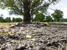 Geen extra boa's om overlast in Enschedees Volkspark tegen te gaan