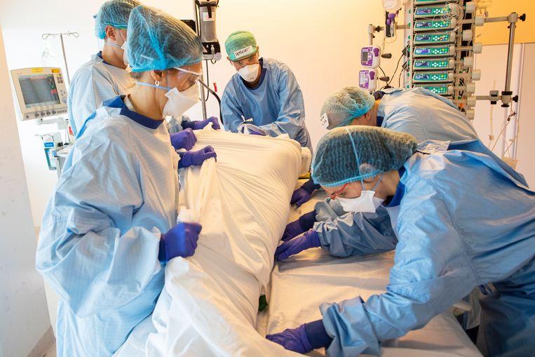 IC-artsen draaien een Covidpatiënt.  Beeld Marc Driessen