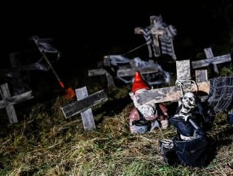"""Na coronapauze wordt Halloweentocht bijzondere editie: """"Special act van de Saurussen"""""""