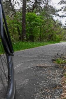 Stikstofproblematiek: Impasse rond verbreding Nunspeetse fietspaden