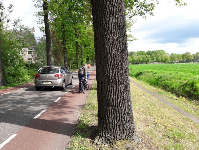 Achter de bomenrij langs de Oirschotseweg is ruimte voor een fietspad.