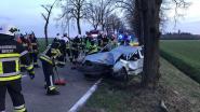 18-jarige zwaargewond na crash tegen boom