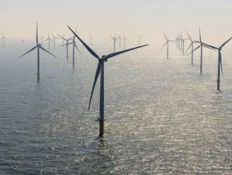 Windmolens tijdens storm uitgeschakeld wegens overaanbod elektriciteit van kerncentrales