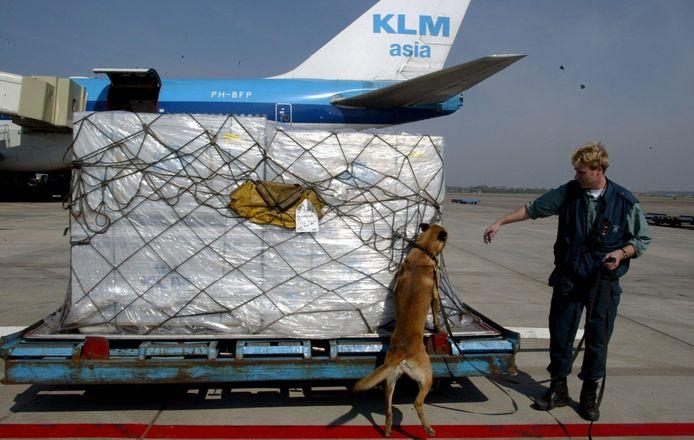 Archiefbeeld ter illustratie: een drugshond controleert een vracht afkomstig uit Mexico.